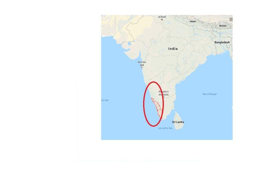 アーユルヴェーダの聖地、南インドのケララとは?