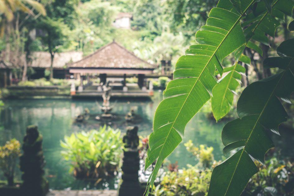 【バリ島】海外のヨガリトリートならウブドで安く一人旅が初心者にもおすすめ