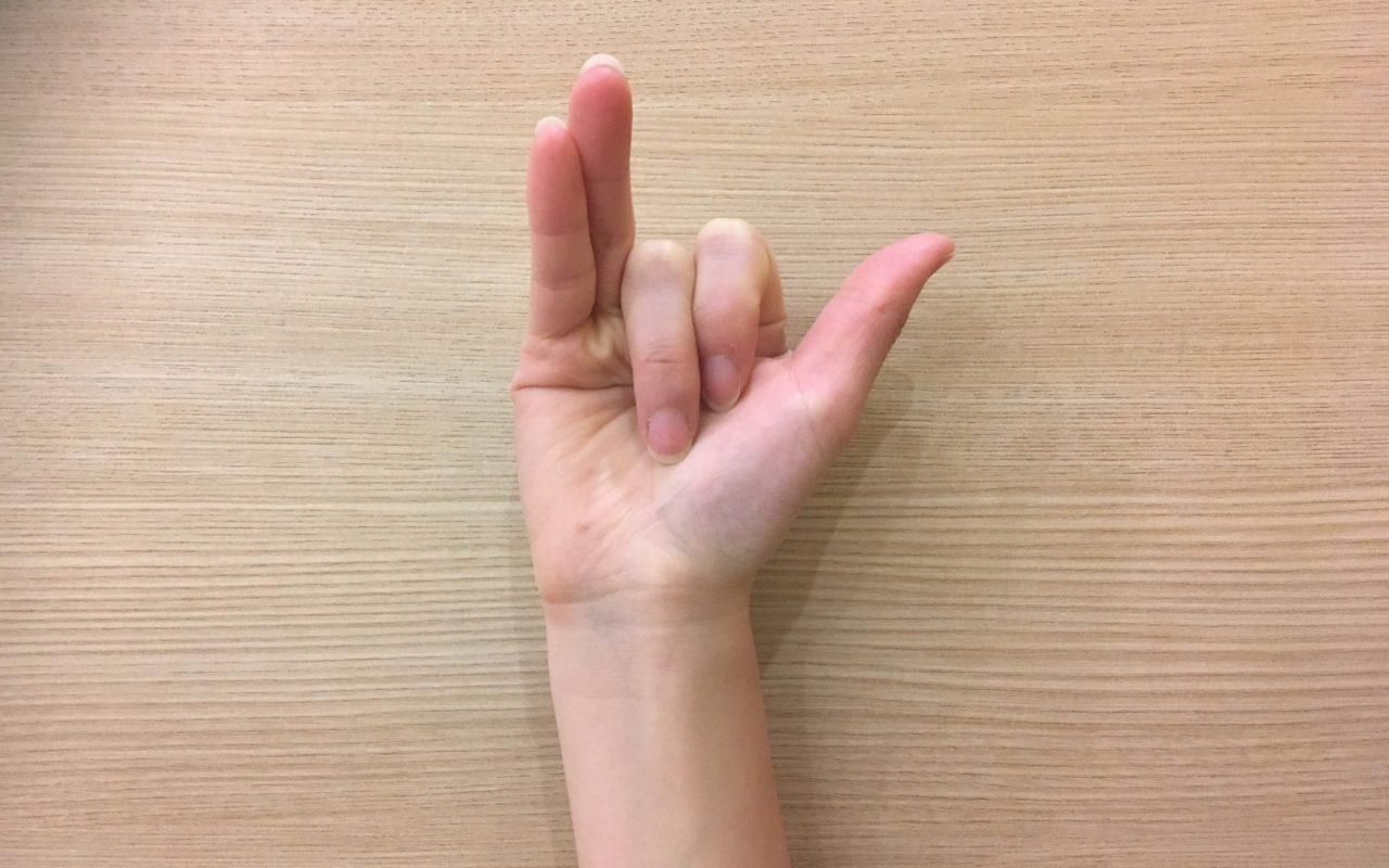 人差し指と中指を折りたたんだヴィシュヌムドラー