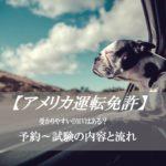 【アメリカで車の免許】取得方法~テスト内容と受かりやすいDMV、日本との違い~