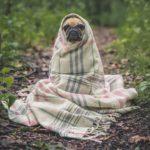 【寒さ・冷え対策】長袖ヨガウェア~安くておしゃれな服装、おすすめ通販~