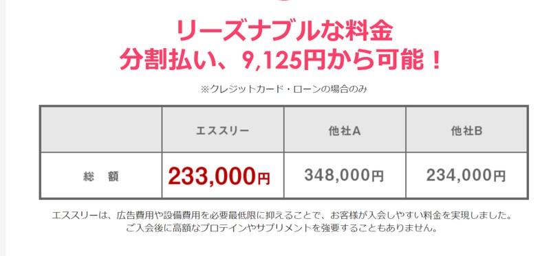 エススリーの料金表233000円