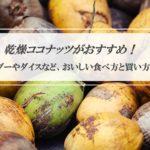【ドライココナッツ】栄養やダイエット効果で人気★食べ方とおすすめの焼きチャンク・ダイスとは?