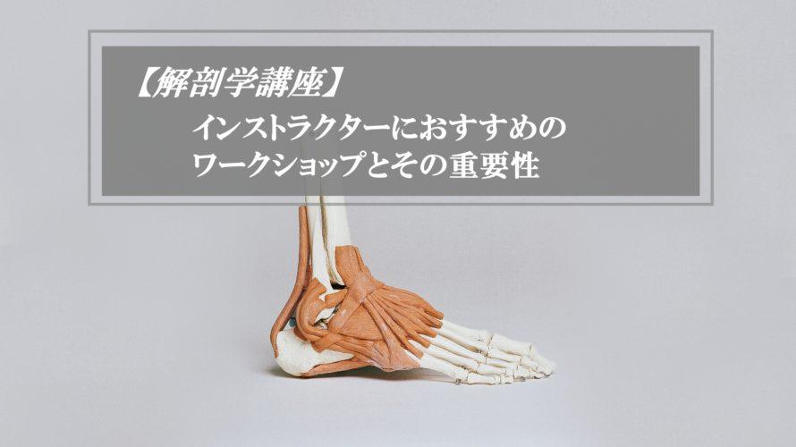 解剖学の人体模型