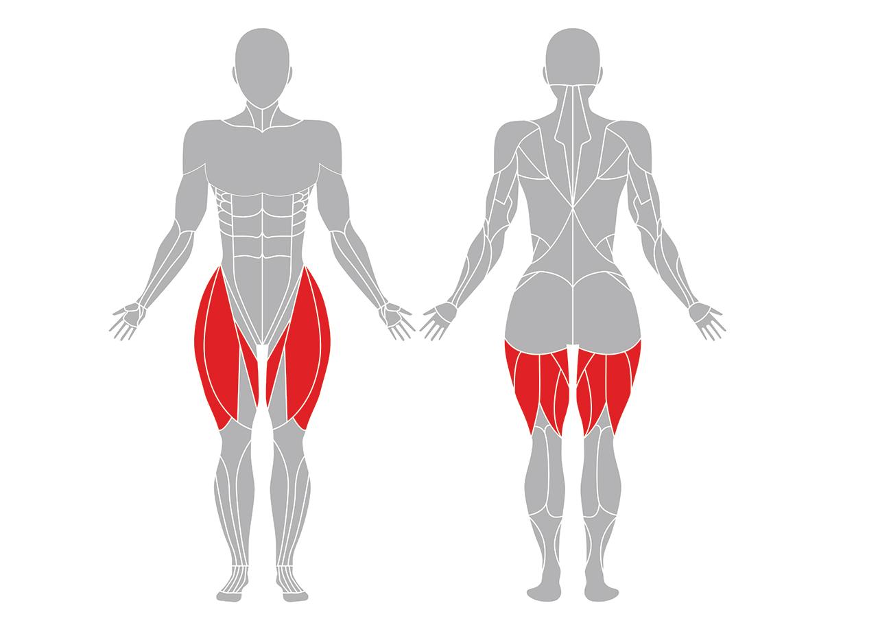 太陽礼拝2の効果のある筋肉部位