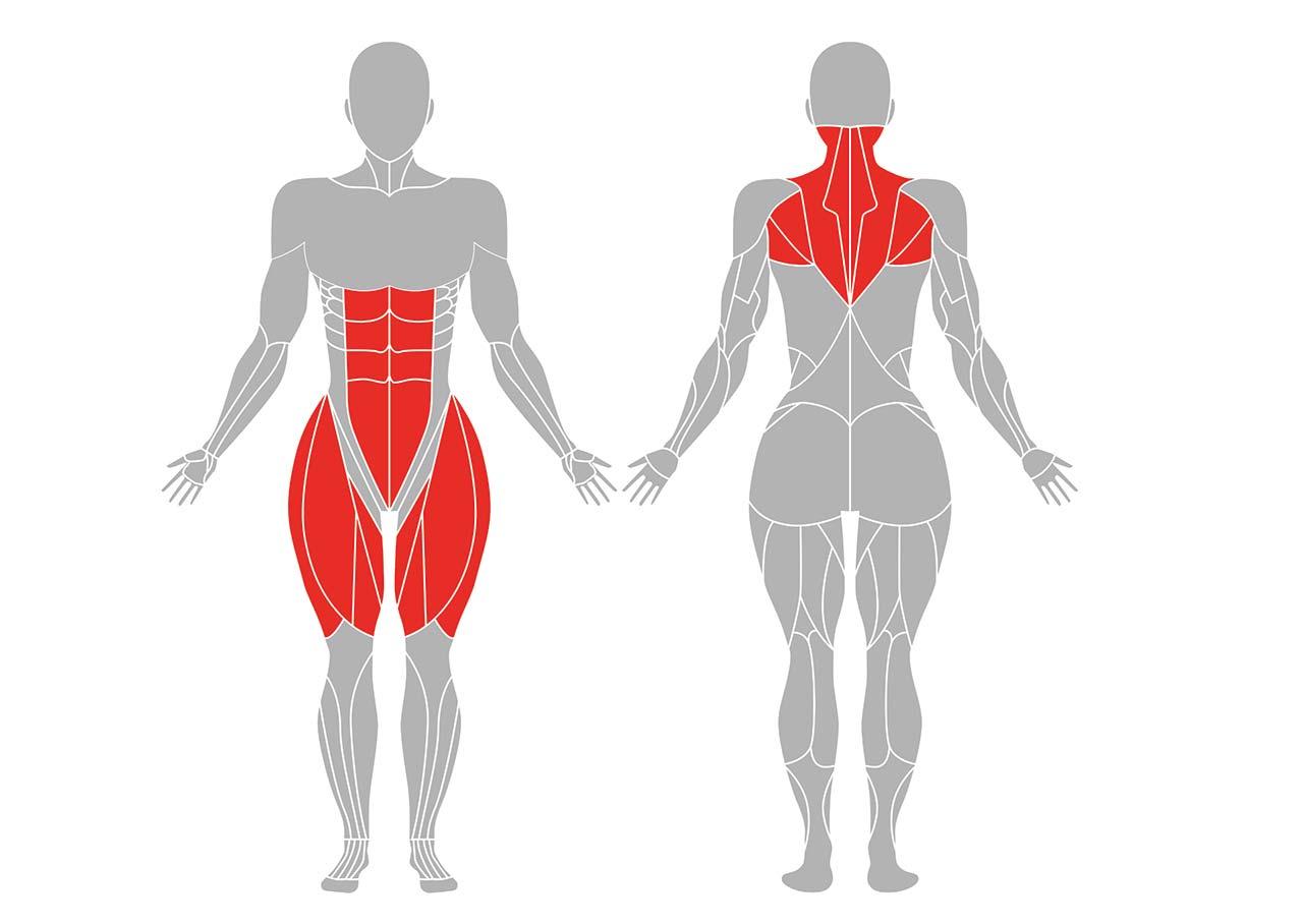 イーグルポーズで鍛えられる筋肉部位