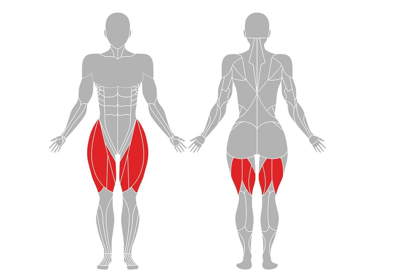 長座前屈の効果のある筋肉