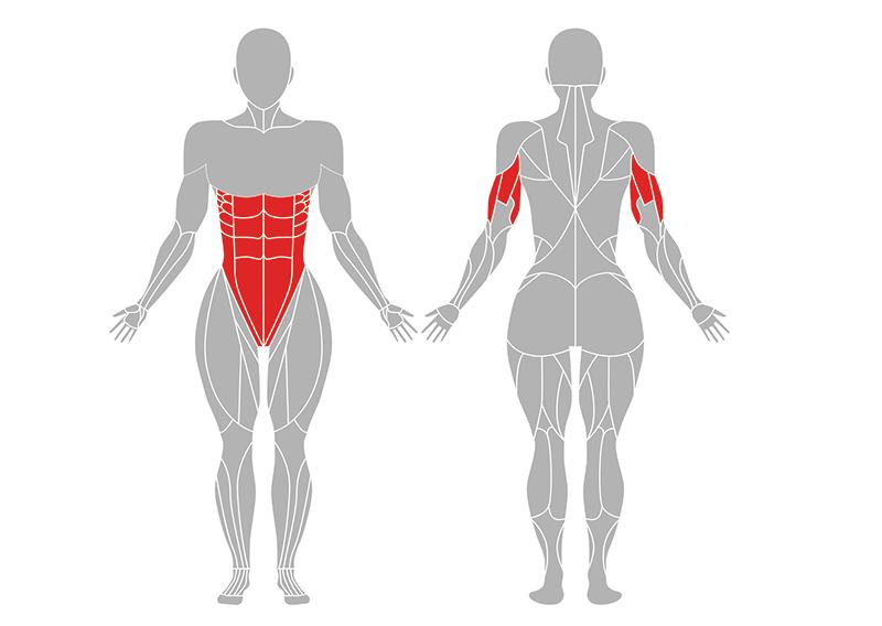 ヘッドスタンドの効果のある体の部位