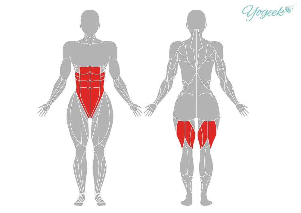 パールシュヴォッタナーサナ (体側を強く伸ばすポーズ )の効果のある筋肉部位