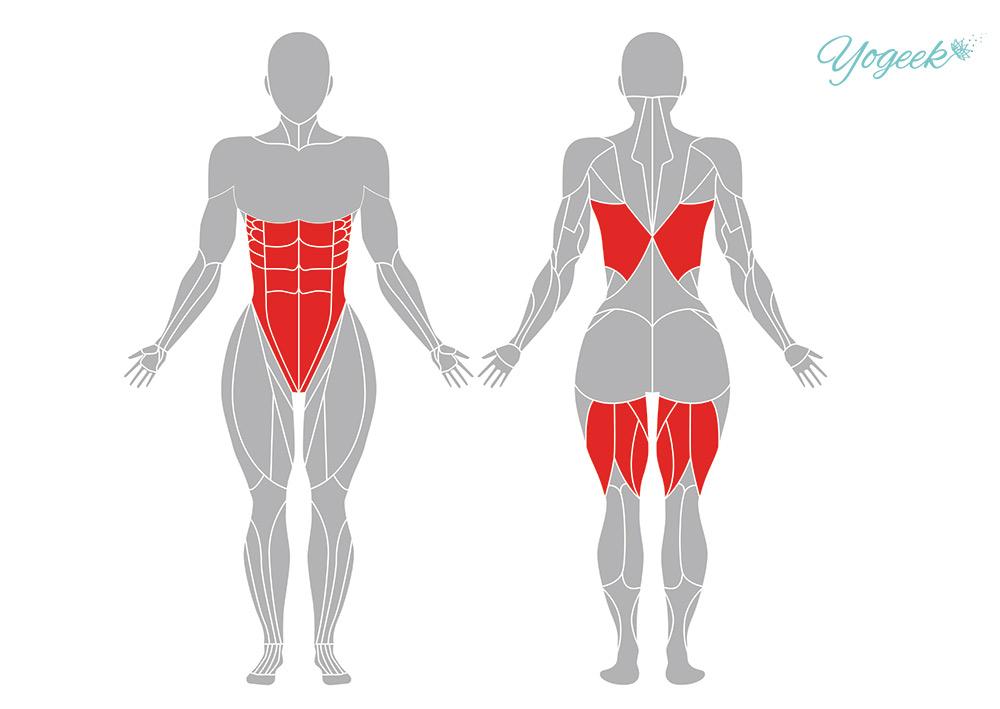 三角のポーズの効果のある解剖学的筋肉部位