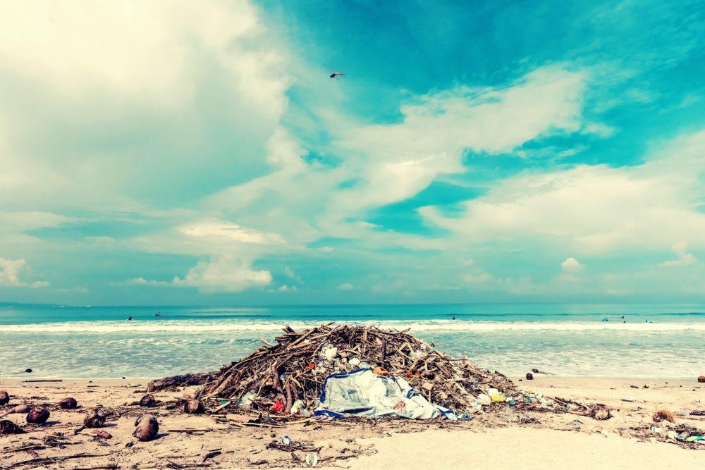 海辺のプラスチックゴミ