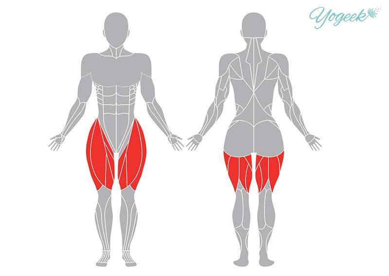 ハヌマーンアーサナの効果が期待できる身体部位