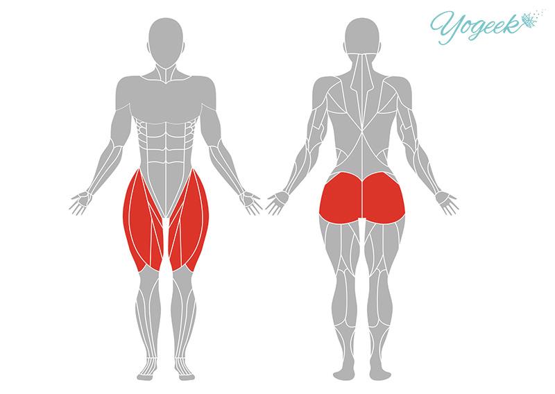 スタンディングスプリット(天地開脚)の効果が期待できる筋肉部位