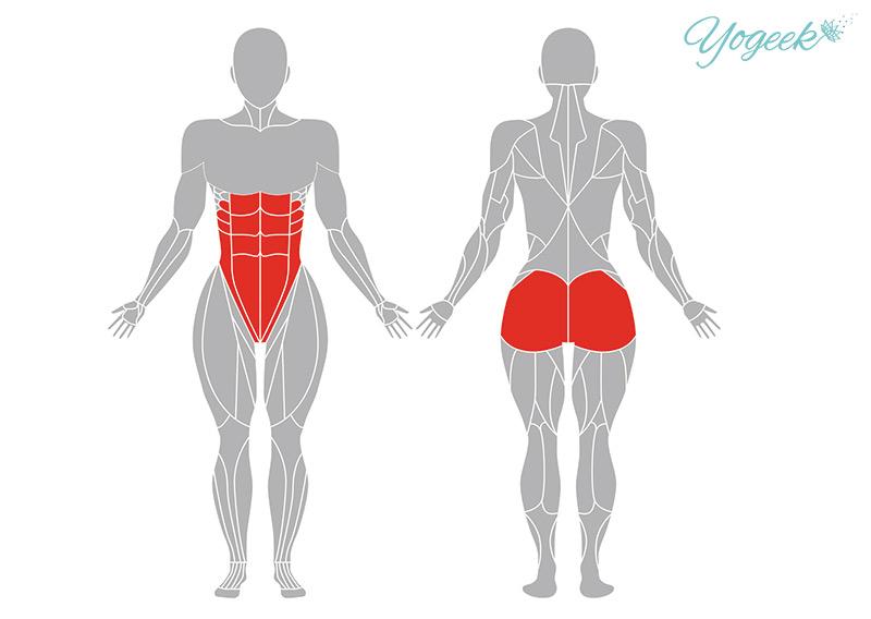 ワニのポーズの効果の期待できる身体部位