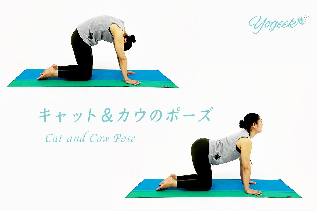 キャットアンドカウのポーズの呼吸のタイミングとやり方