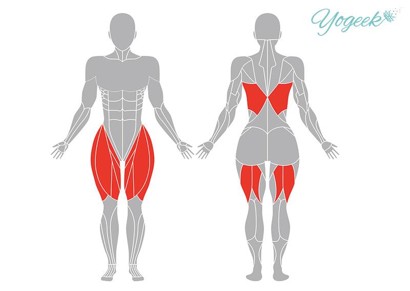 ブッダのポーズと花輪のポーズの効果が期待できる筋肉部位