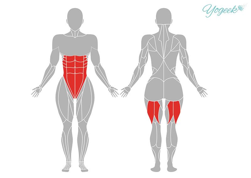 賢者のポーズ(ヴァシシュターサナ)の効果が期待できる筋肉部位