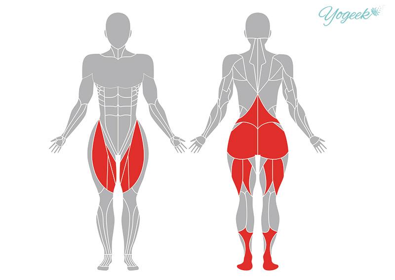 ロータスポーズの効果の期待できる身体部位