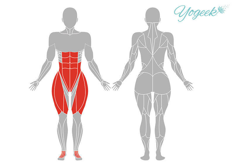 仰向け英雄のポーズの効果が期待できる筋肉部位