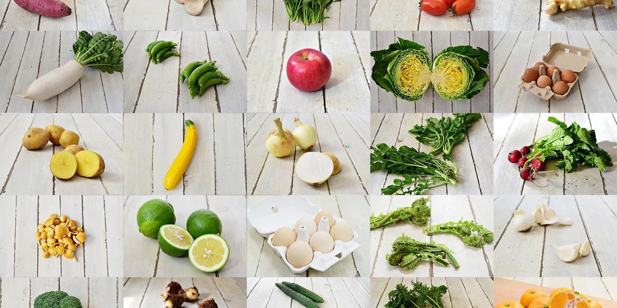 ココノミの野菜