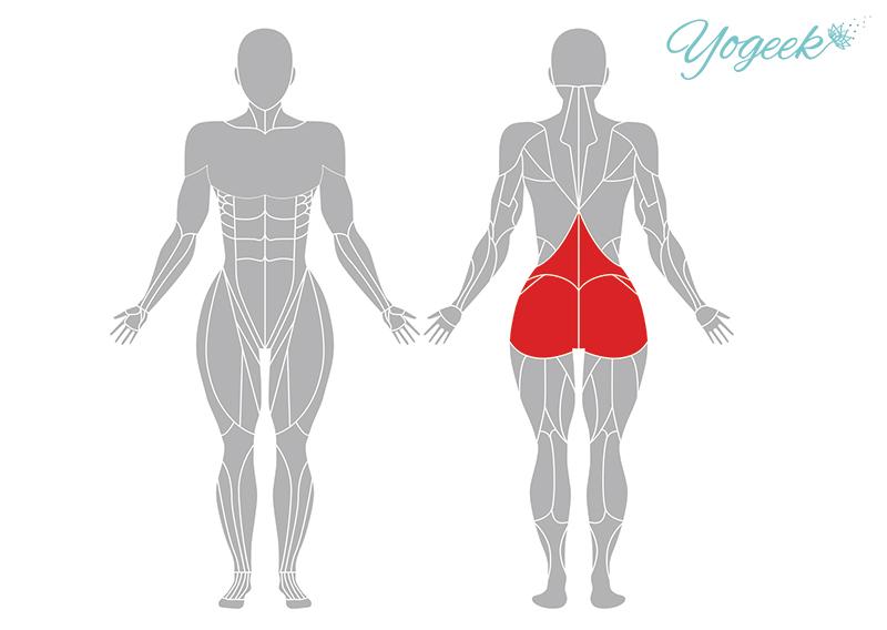 針の穴のポーズの効果が期待できる身体部位