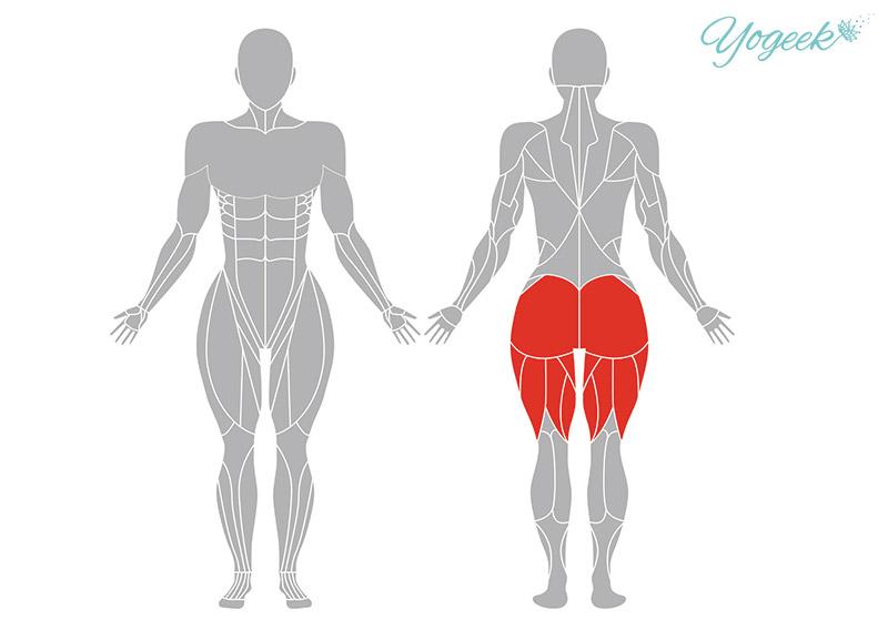 ハッピーベイビーのポーズの効果が期待できる身体部位