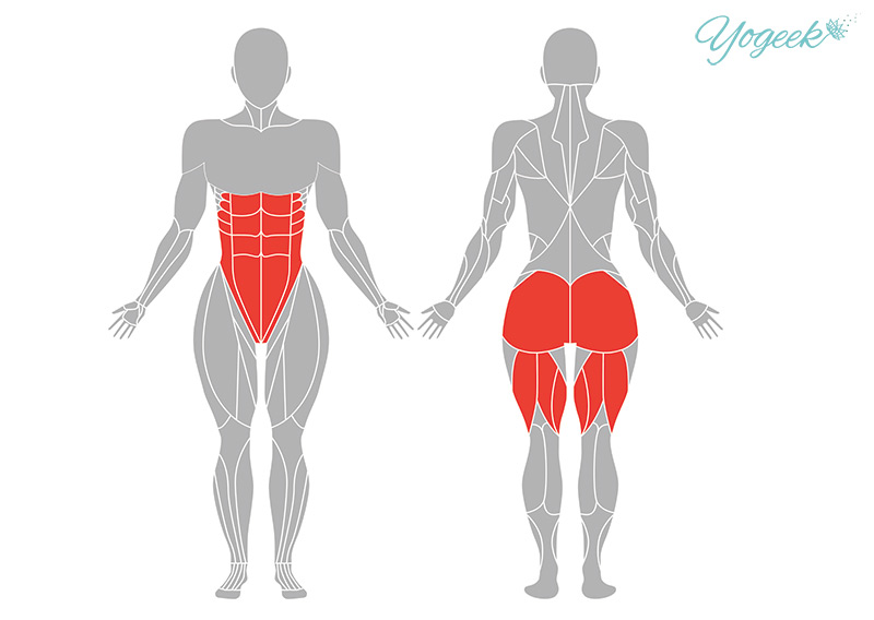 トカゲのポーズの効果が期待できる身体部位