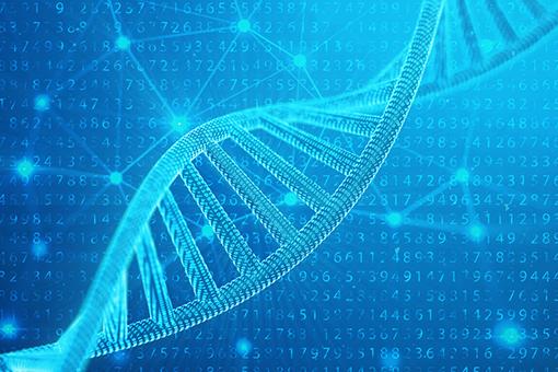 遺伝子解析